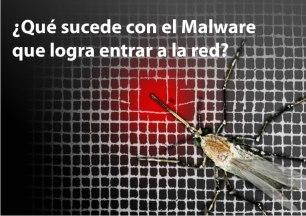 Que sucede con el Malware que entra a la Red