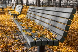 Leaves on public benches in Jackson Square in Boston
