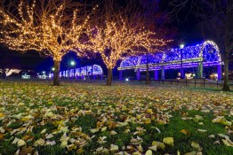 Christopher Columbus Park, in Boston, during Christmas time