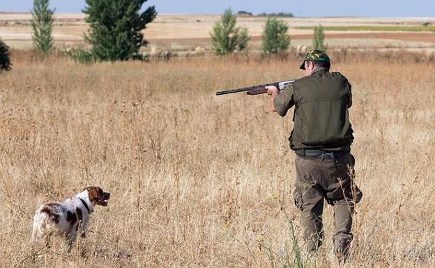 Photo of El Gobierno permitirá finalmente la caza en la Fase 1 a partir de este lunes
