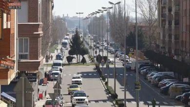 Photo of El Plan Renove 2020, clave para reflotar un sector tocado y un parque automovilístico «hundido»