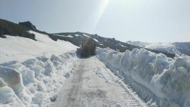 Photo of Alerta naranja el jueves en Sanabria por acumulaciones de nieve hasta 30 centímetros