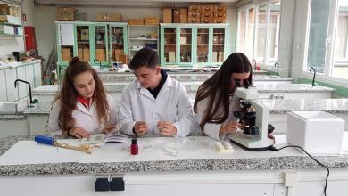 Photo of «Los Sauces» apuesta por proyectos de investigación e innovación educativa