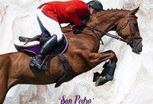 Photo of Zamora acoge este fin de semana el concurso de saltos de caballos jóvenes CSN 3 ESTRELLAS