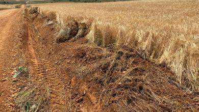 Photo of El PP de Benavente recoge las quejas de agricultores por daños en sembrados