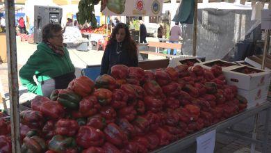 Photo of La Feria del Pimiento y de Productos de la Tierra se celebrará el último fin de semana de septiembre