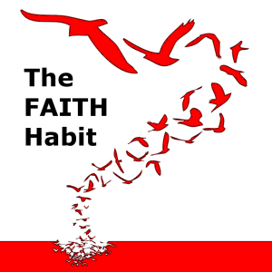 The Faith Habit