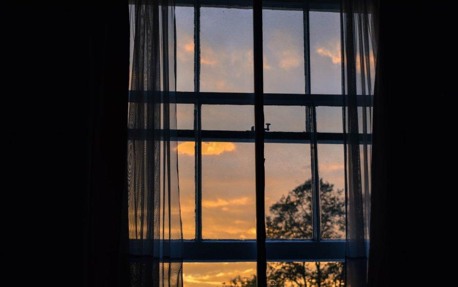 Open Windows (a very short story)