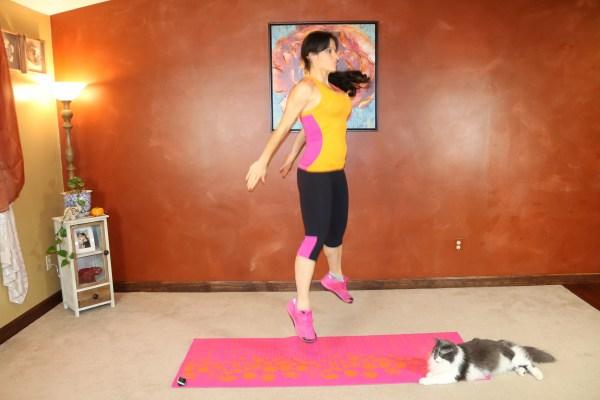 Squat Jump: Part 2