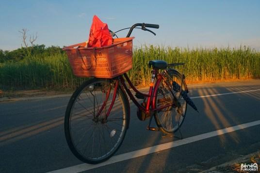 Mon vélo à Okinawa