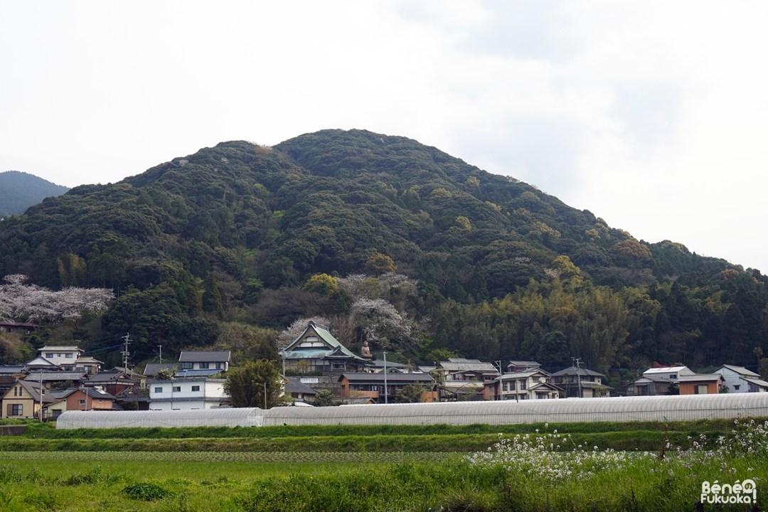 Campagne japonaise à Fukuyoshi