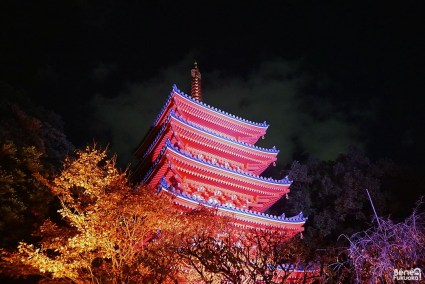 Hakata Light Up Walk, Tôchô-ji, Fukuoka