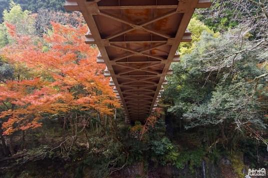 Pont au dessus de Sarutobi Sentsubo, Ôita
