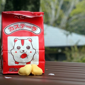 Petit goûter sous les cerisiers de Fukuoka