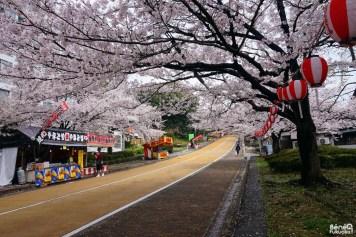 La route menant au parc Nishi, Fukuoka