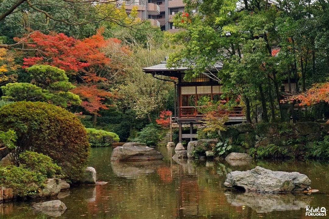 Érables au jardin Yûtsentei de Fukuoka