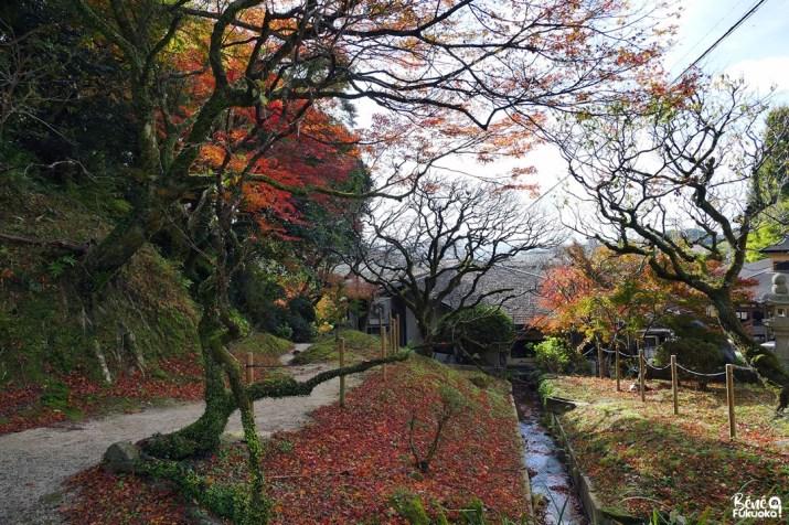 L'automne à Dazaifu