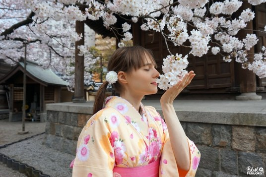 Kimono au temple Tôchô-ji, Fukuoka
