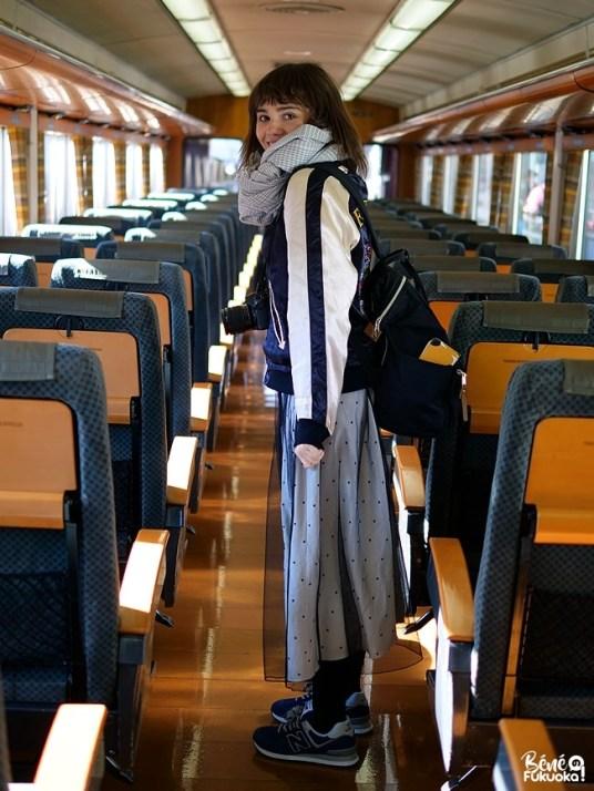 Train Trans-Kyushu Limited Express (Kyushu Odan Tokkyu)