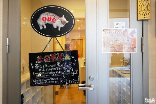 Entrée du café à chats OBC, Fukuoka