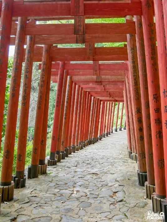Allée de torii au sanctuaire Yûtoku Inari, préfecture de Saga
