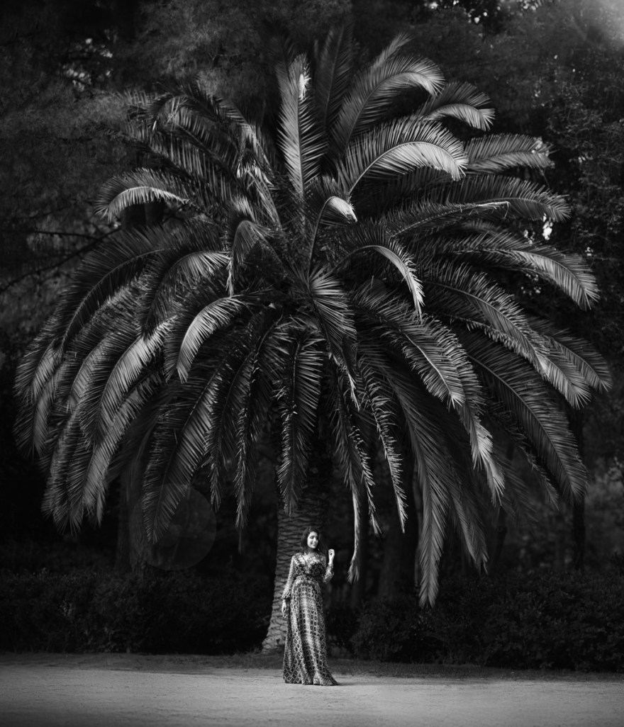 royal photographer fashion portrait girl princess