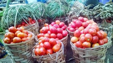 Photo of BenAgri, le portail web qui transpose le marché des produits agricoles béninois sur Internet