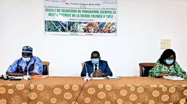 agriculture-–-pndf-ph-:-le-palmier-a-huile-au-coeur-d'un-atelier-de-validation