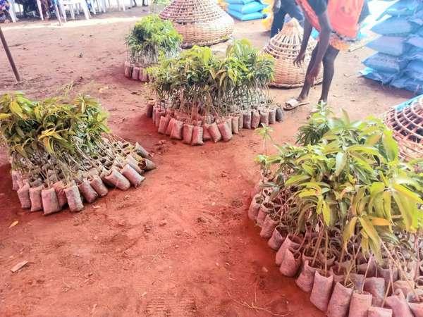 remise-d'equipements-dans-le-cadre-du-projet-tcp-ben-3705-:-le-maep-et-la-fao-luttent-contre-l'insecurite-alimentaire-et-nutritionnelle-a-za-kpota