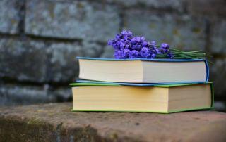 7 Bücher für deine persönliche Entwicklung