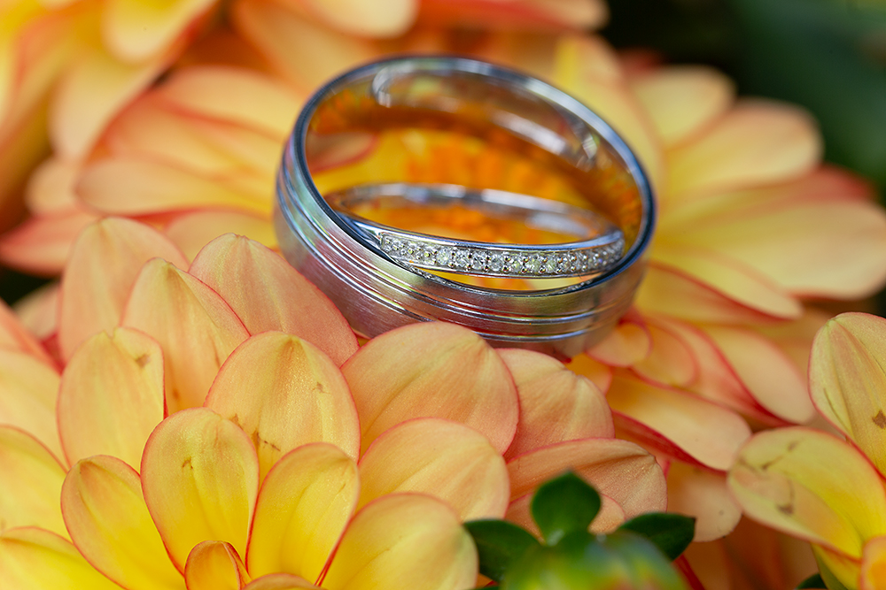 Wedding Rings on garden flowers