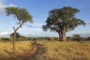 AKeBenny-Rebel-Fotoreise-Tansania