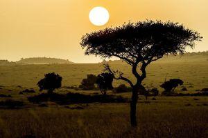 AMi-Benny-Rebel-Fotoreise-Maasai-Mara-Kenia