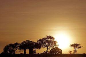 AMjBenny-Rebel-Fotoreise-Tansania