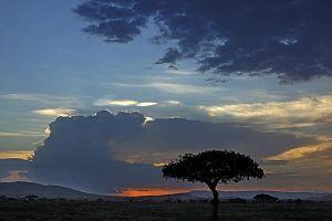 ATeBenny-Rebel-Fotoreise-Tansania