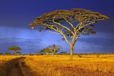 BQBenny-Rebel-Fotoworkshop-Tansania