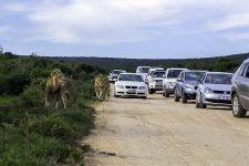 CA-Benny-Rebel-Fotoreise-Suedafrika-Tourismus