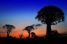 DEBenny-Rebel-Fotosafari-Namibia