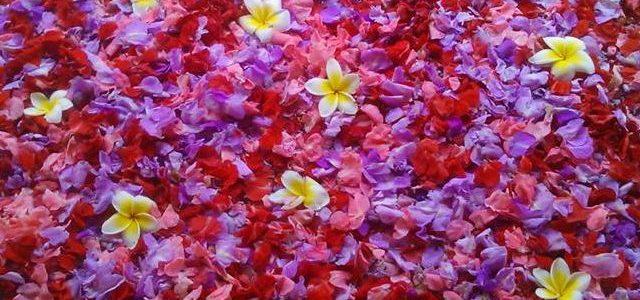 Flower bath in Ubud Bali
