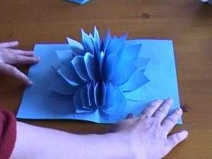 lotuscard11