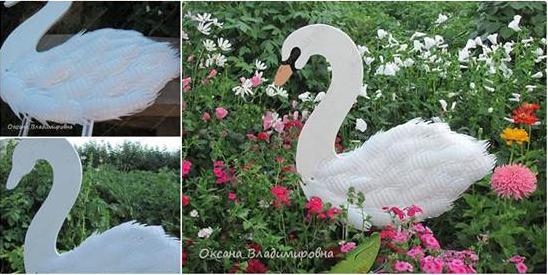 swan1-4