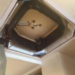 【絆レポート】熊谷市 ご飲食店様 天井埋込エアコンクリーニング作業の詳細へ