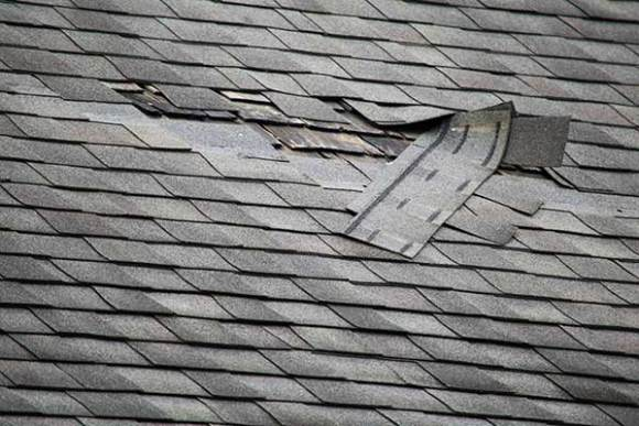 Bay area roof with damaged shingles