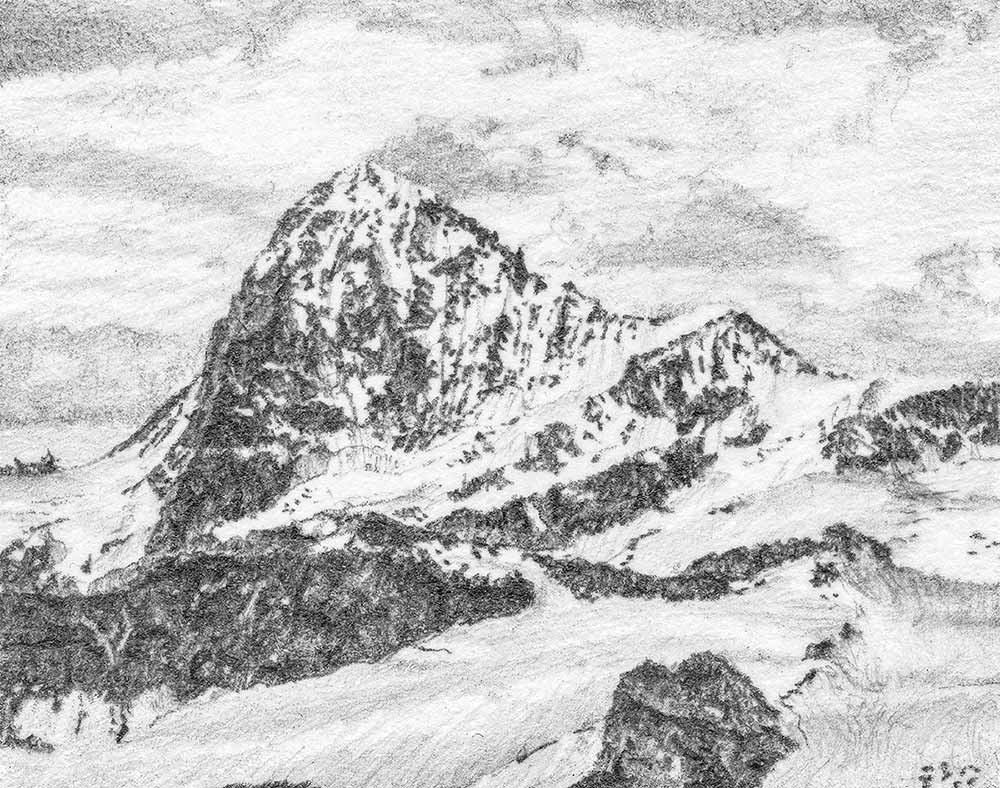 Dent blanche pencil drawing