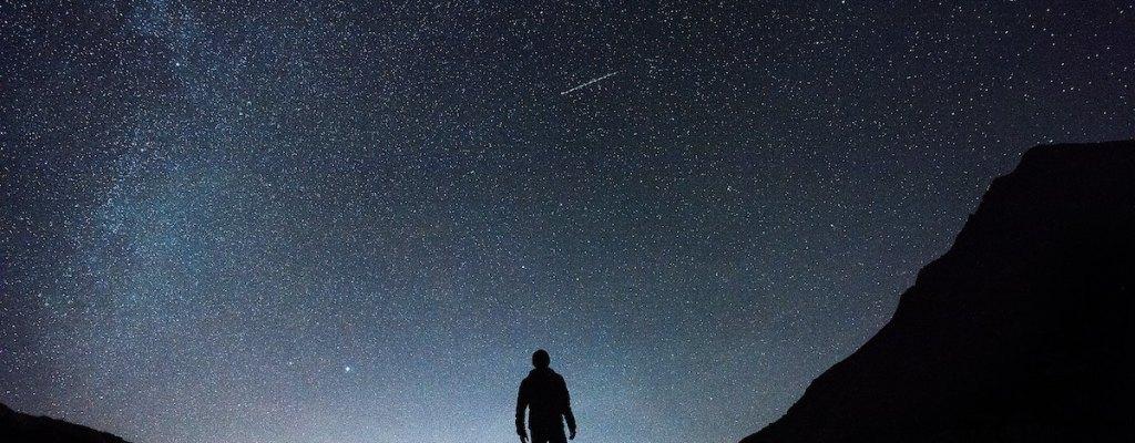 Wise Guys Chasing Stars