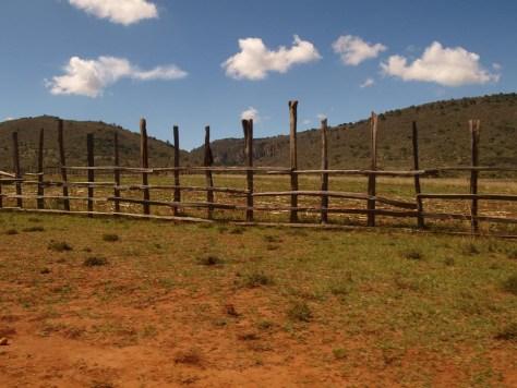 Hinter den Zäunen ist das Land noch grün.