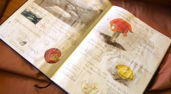 Ein Naturtagebuch führen