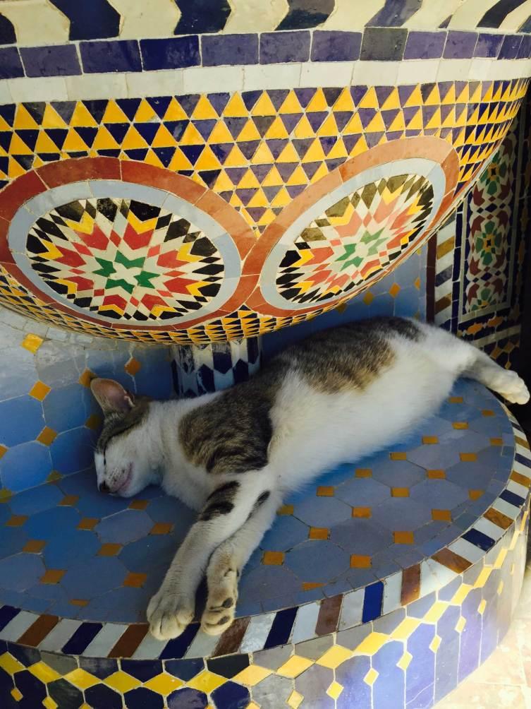 Handicrafts  in Morocco, BerberBazar