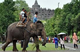Sektor Pariwisata Paling Siap Hadapi Mea