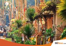 4 Faktor Suksesnya Pembangunan Desa Wisata